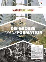 die grosse transformation - Naturfreunde Altkreis Grafschaft Hoya