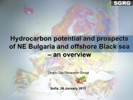 Hydrocarbon potential - Geological Institute