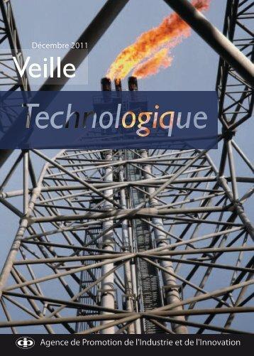 Veille Technologique - Décembre 2011 - Tunisie industrie