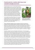 I sistemi di coltivazione biologica del cotone riducono la povertà e ... - Page 7
