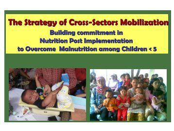 (The Strategy of Cross-Sectors Mobilization, PD Nutrition in ...