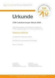 Urkunde TOP-Lokalversorger Strom 2009 - Stadtwerke Karlsruhe