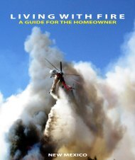 Living with Fire - Jemez Springs