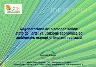 Cogenerazione da biomassa solida.pdf - Gammel Duvia ...