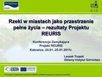 prezentacja Parnera Wiodącego (GIG) - Główny Instytut Górnictwa