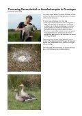 Themadag Ganzenbeleid en faunabeheerplan in Groningen - Page 2