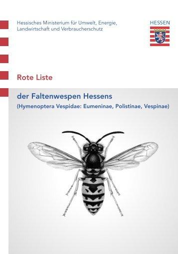 Rote Liste der Faltenwespen Hessens - Senckenberg Museum