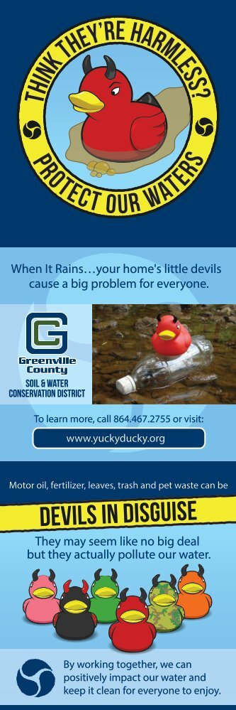 Stormwater Brochure - Greenville County
