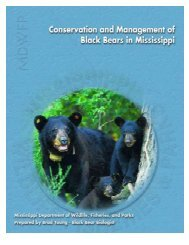 Conservation and Management of Black Bears in Mississippi (2006)