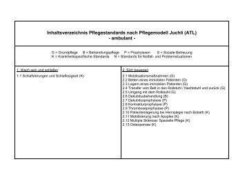 145 pflegestandards ambulant nach juchli atl als pdf - Pflegestandards Beispiele