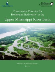 Guidelines for Identifying Conservation Targets - NatureServe
