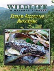 Stream-Associated Amphibians. - Washington Tree Farm Program