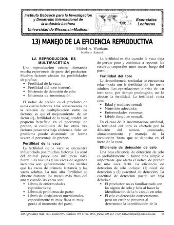 13) MANEJO DE LA EFICIENCIA REPRODUCTIVA - Babcock Institute
