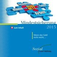 Mindestsicherung 2013 - Land Salzburg