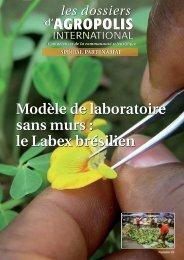 Téléchargez le dossier - Agropolis International