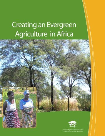Creating an EverGreen Agriculture in Africa for Food Security and