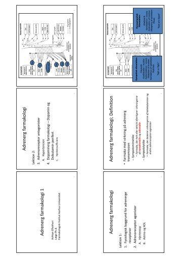 Adrenerg farmakologi