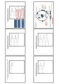 Adrenerg farmakologi - Page 2