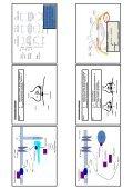 Adrenerg farmakologi - Page 4