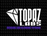 Blending and Merging - Topaz Labs