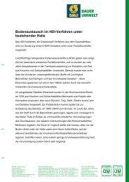 Bodenaustausch im HDI-Verfahren unter ... - BAUER Umwelt GmbH
