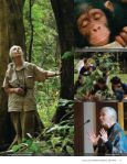 AnnuAl RepoRt 2010 - the Jane Goodall Institute of Canada - Page 5