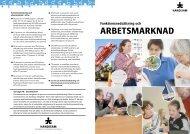 Funktionsnedsättning och arbetsmarknad i pdf-format (1 ... - Handisam