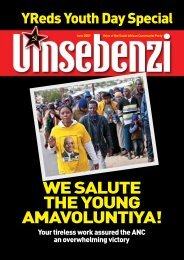 We salute the young amavoluntiya! - South African Communist Party