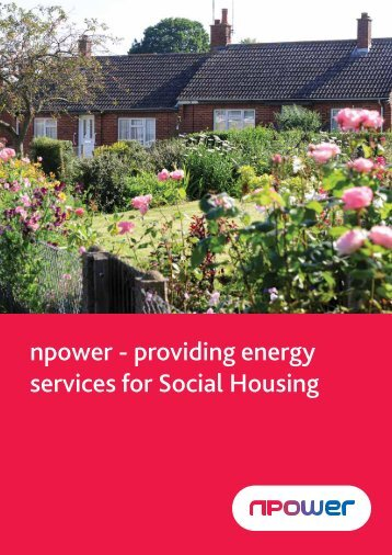 Download Energy Index (PDF) - Npower