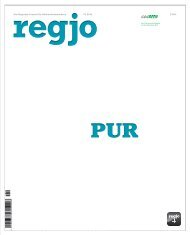 regjo Südostniedersachsen - Heft I 2014 - Pur