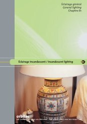Incandescent lighting - Palissy Galvani