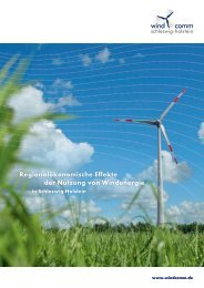 Regionalökonomische Effekte der Nutzung von Windenergie in ...