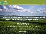 A Indústria com Base em Florestas Plantadas - Panorama Mundial e ...