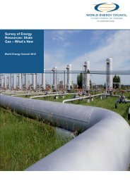 Survey of Energy Resources: Shale Gas – What's New