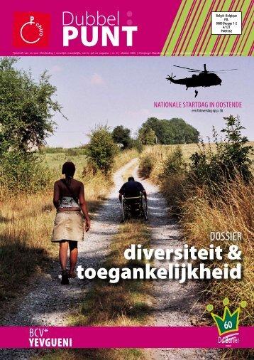 diversiteit & toegankelijkheid - Interculturaliseren