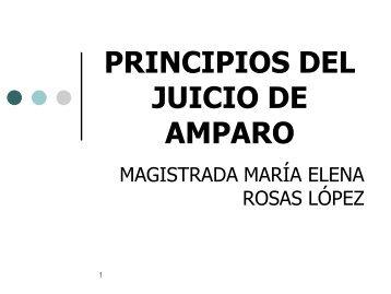 principios del juicio de amparo - Tribunal Electoral del Poder ...