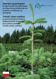 Juletræer og pyntegrønt Choinki i zieleń ozdobna - BAR - jord til bord.