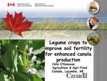 Legume Crop before Canola - Canola Council of Canada