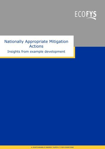 Nationally Appropriate Mitigation Actions - International Partnership ...