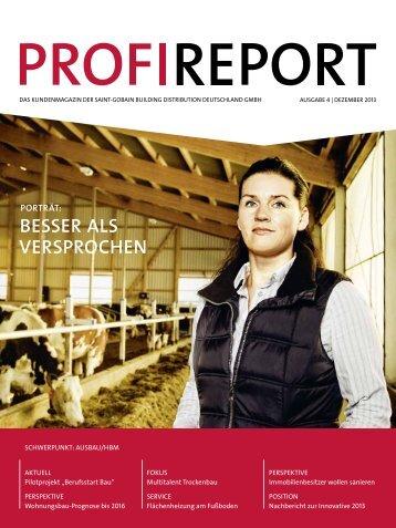 Profireport 04/13 - Raab Karcher