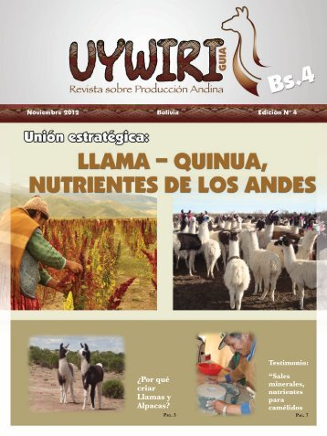 Boletin Uywiri 04 .pdf - Cop-ppld.net