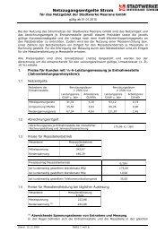 Netznutzungsentgelte Strom (gültig ab 01.01.2010 - Anpassung ...