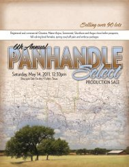 to view our 2011 Panhandle Select Sale Catalog - ClubCalves.com