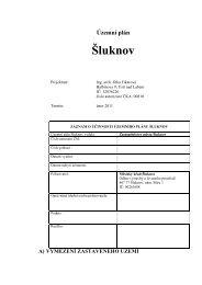 ÚP Šluknov - textová část