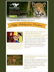 December 2010 - Panthera