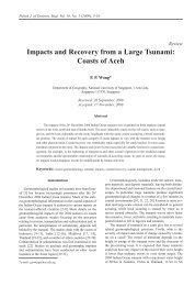 Impacts and Recovery from a Large Tsunami: Coasts of Aceh