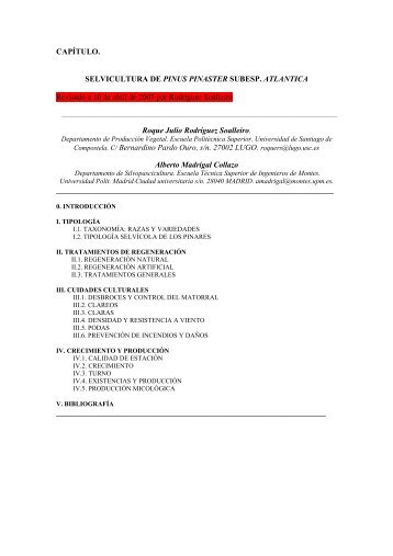 Pinus pinaster sub_ atlantica - Páxinas persoais - USC