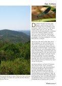 Die Sierra Morena in Spanien - Seite 7