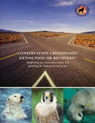 Conservation Crossroads: Extinction or Recovery? - Defenders of ...