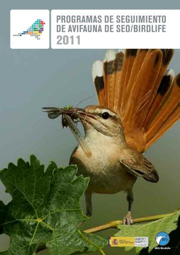 tendencia de las aves en invierno - SEO/BirdLife